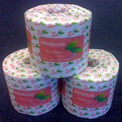 Toilet Paper Roll Premium Unwrapped 2ply 700 Sheet