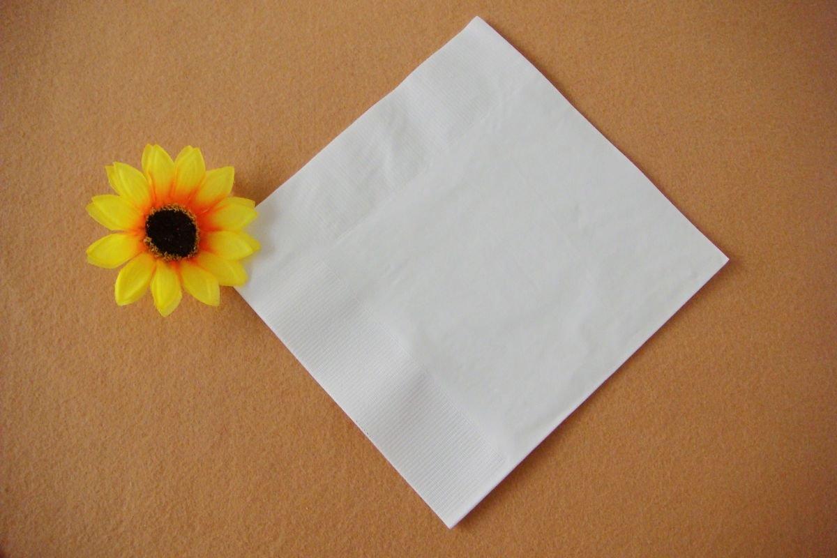 "Napkin 1ply 1/4 Fold 300x300mm Square ""Alexandra Paper"""